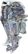 Honda Kraftstoff Benzin -Stecker